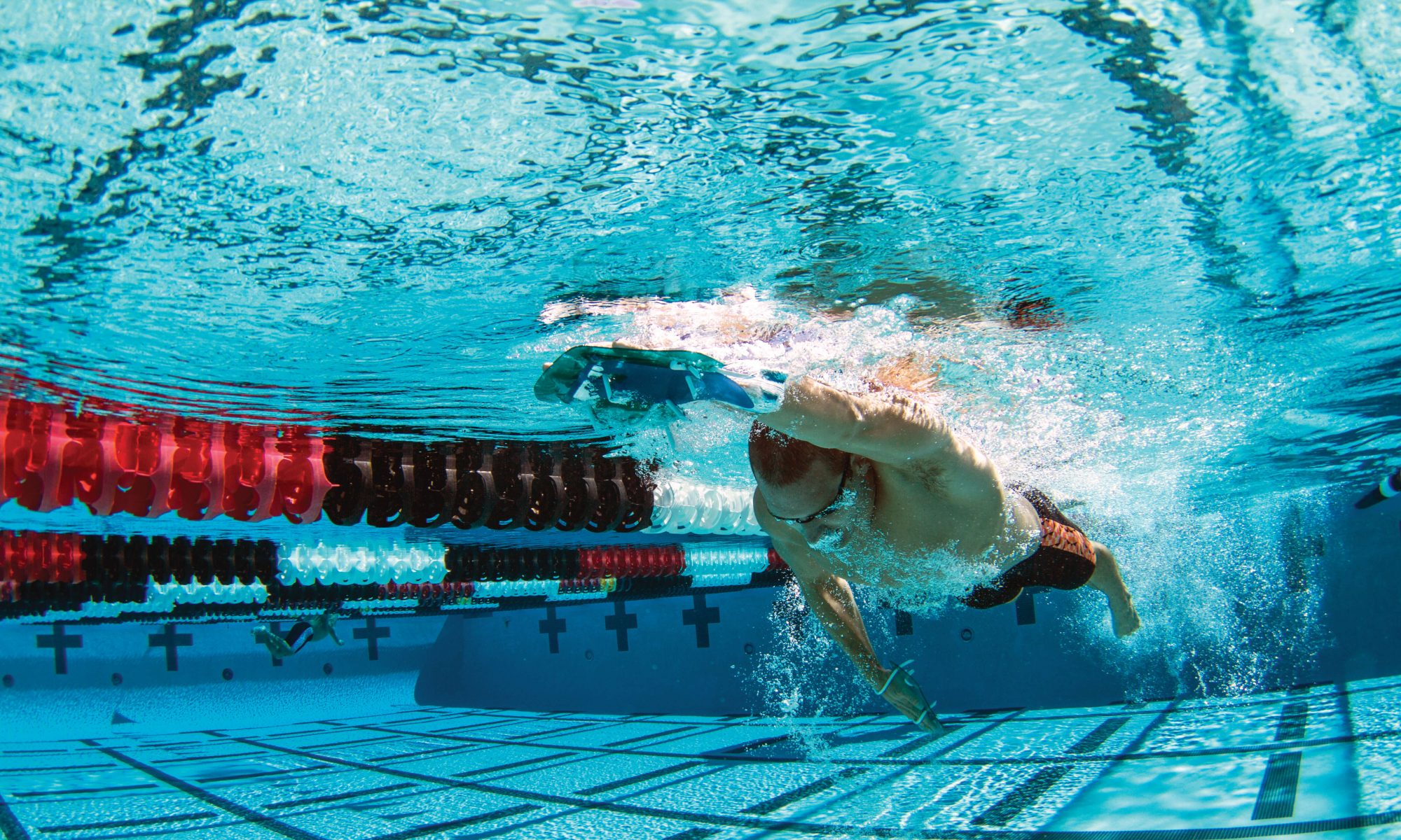 Dolfin Swimwear - Blog
